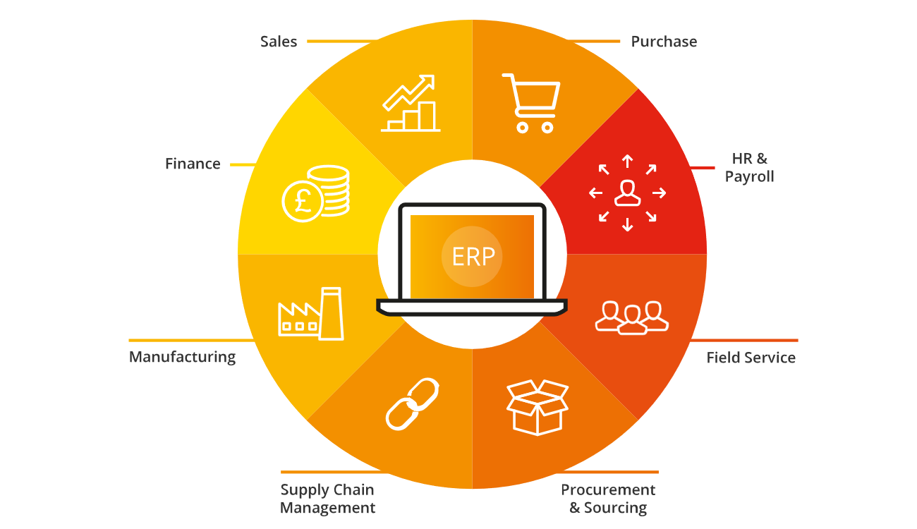Choosing An Erp System Advanced